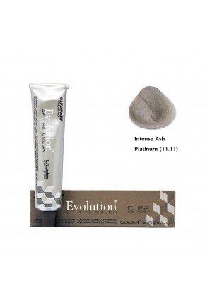 evolution 11 11