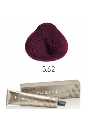 evolution5 62